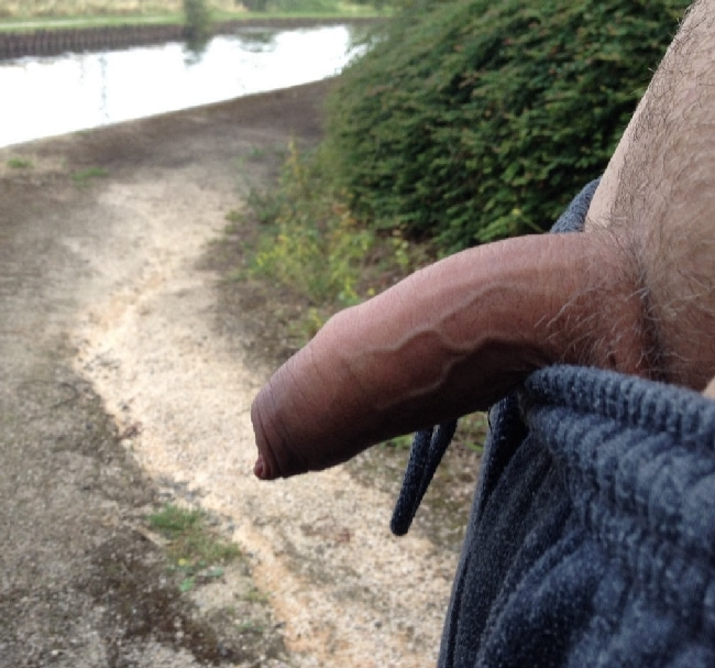 Cock Outdoors